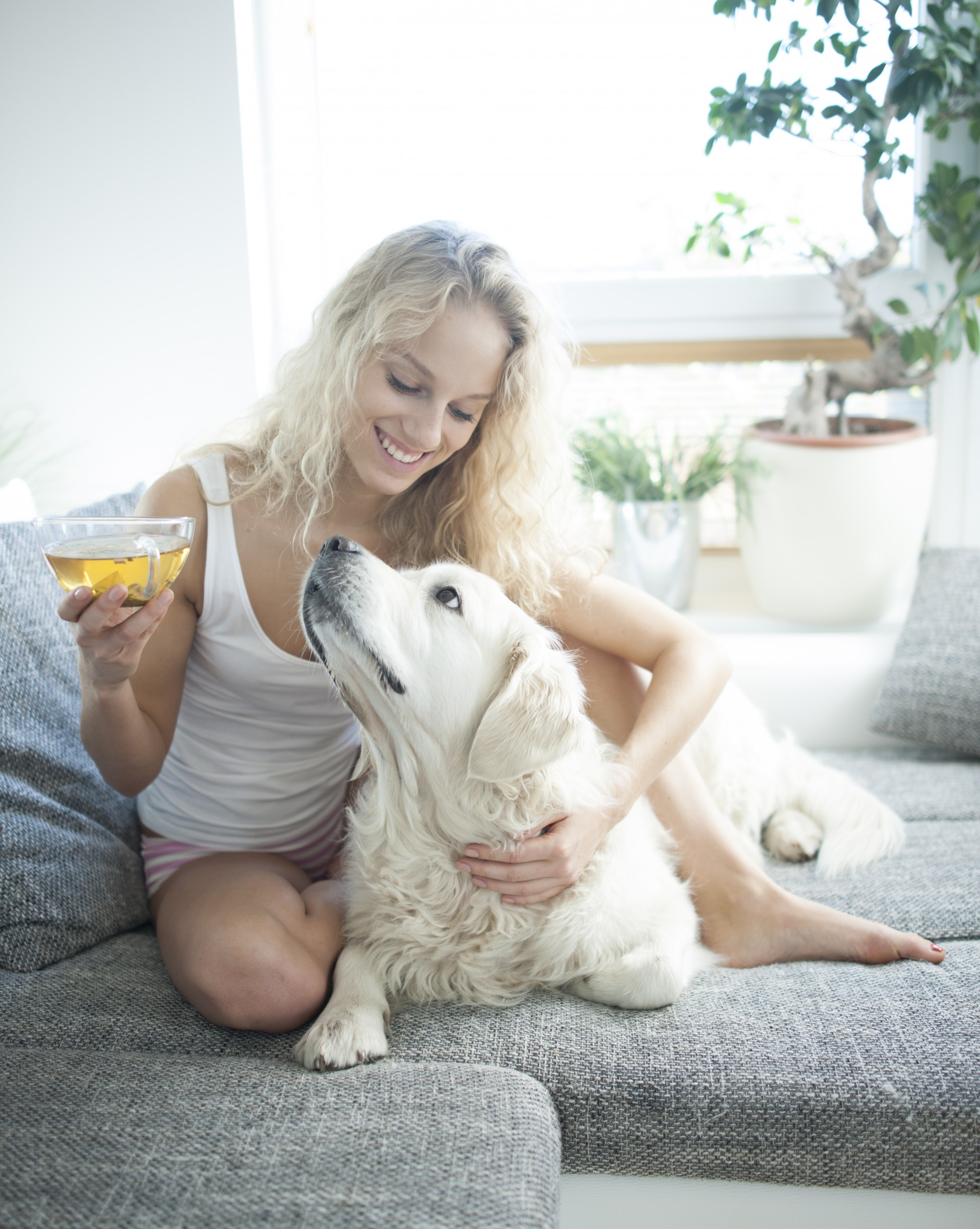 Beautiful woman holding tea cup while touching dog on sofa